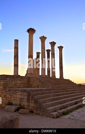 Excavated Roman City, Volubilis, UNESCO World Heritage Site, Morocco, North Africa, Africa - Stock Photo