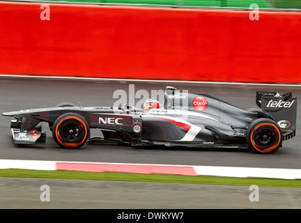 Nico Hulkenberg in the Sauber at British grand Prix F1 Silverstone 2013 - Stock Photo