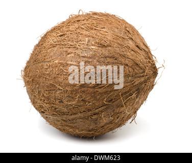 Single coconut isolated on white - Stock Photo