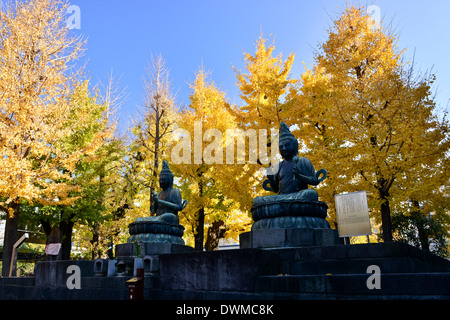 Ginkgo tree at Sensoji temple - Stock Photo