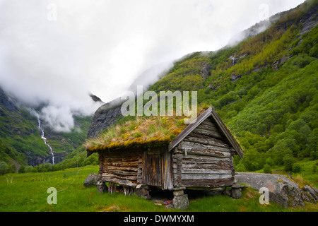 Scandinavian old traditional house with grass roof in Norway - Stock Photo