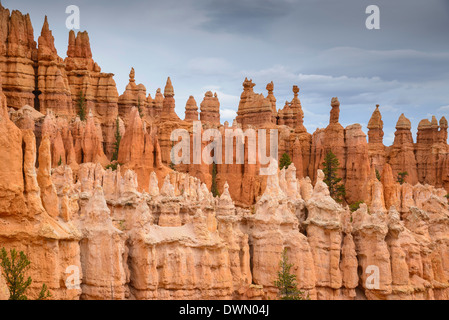 Bryce Canyon at dawn, from Sunset Point, Bryce Canyon National Park, Utah, United States of America, North America - Stock Photo