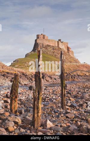 Lindisfarne Castle on Holy Island, Northumberland, England, United Kingdom, Europe - Stock Photo