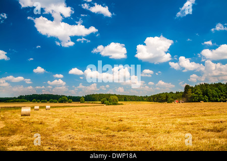 Ricks on the wheat field under blue cloudy sky - Stock Photo
