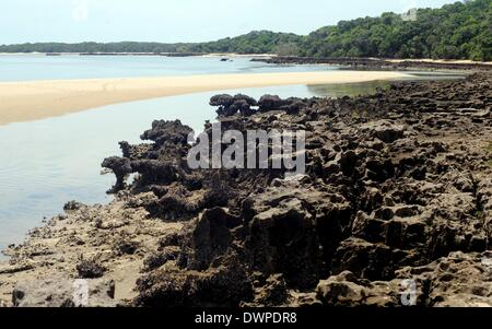 Inhaca Island, Mozambique. 24th Feb, 2013. Coral reefs are pictured at the beach of Inhaca Island, Mozambique, 24 - Stock Photo