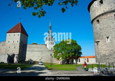 Town wall, Tallinn - Stock Photo