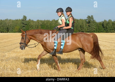 Two girls (wearing helmet and back protector) riding together on back of an 'Irish sport horse' pony in a stubble - Stock Photo