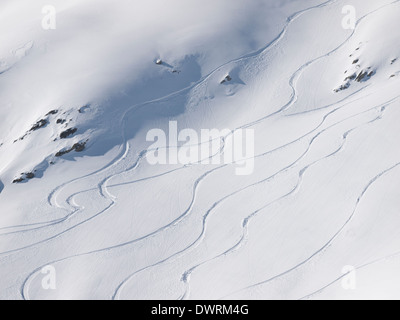 backcountry skiier trails on an untouched piste - Stock Photo