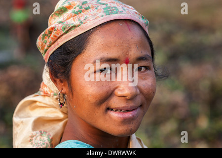 Smiling fishing woman with scarf  from the Mishing tribe wearing Assamese scarf, Majuli Island, India - Stock Photo