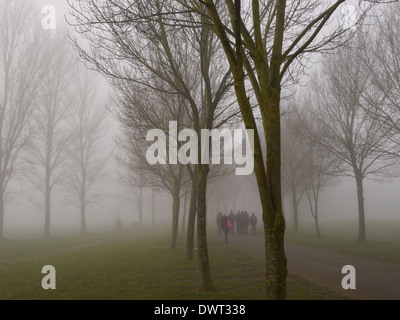A group of school children walking to school in the fog through the trees - Stock Photo
