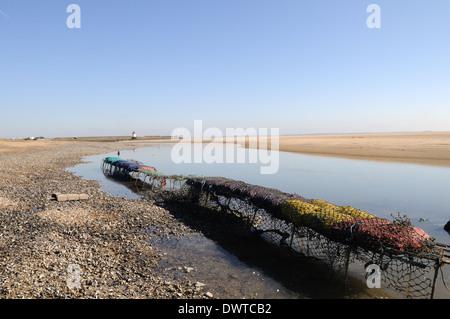 Sacks of mussels on a wire rack Burry Estuary Burry Port Carmrthenshire Wales Cymru UK GB - Stock Photo