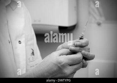 Consultation vaccine - Stock Photo