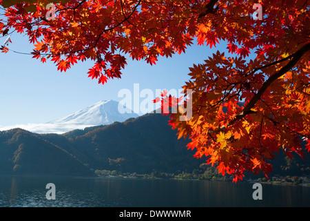 Mt. Fuji and Lake Saiko in autumn, Yamanashi, Japan - Stock Photo