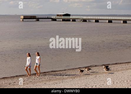 Female friends walking at beach against pier - Stock Photo