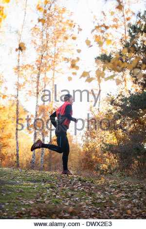 Full length of mid adult man jogging in forest - Stock Photo