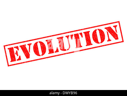 EVOLUTION red Rubber Stamp over a white background. - Stock Photo