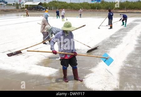 salt collecting in salt farm in Thailand - Stock Photo