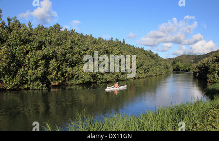 One-person outrigger canoe on the Hanalei River on Kauai - Stock Photo