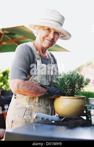 Happy senior woman planting new plant in terracotta pot on a counter in backyard. Senior female gardener working - Stock Photo