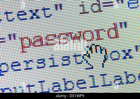digital hand catching password in a html form on lcd screen - Stock Photo