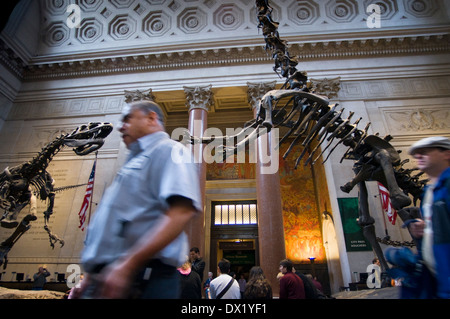 American Museum of Natural History. Central Park West and 79th Street . The areas that attract attention are the - Stock Photo