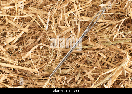 Finding a needle in a haystack concept - Stock Photo
