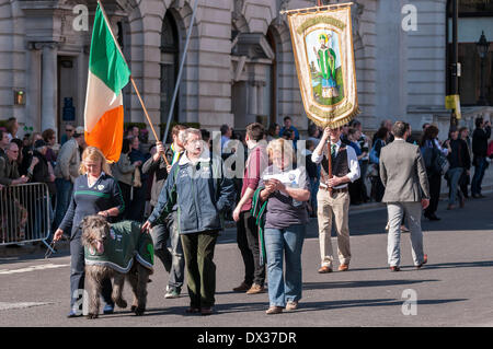 Waterloo Place, London, UK, 16 March 2014 - the annual St. Patrick's Day parade took place in bright sunshine in front of thousands of people who lined the route.  The parade was led by an Irish wolfhound. Credit:  Stephen Chung/Alamy Live News Stock Photo