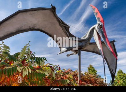 Pteranodon, Cretaceous period, Dinosaur Garden at Utah Field House of Natural History State Park Museum, Vernal, - Stock Photo