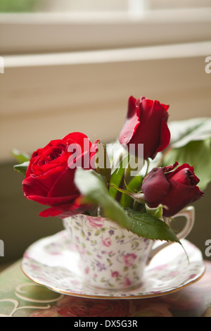 Red roses in feminine floral teacup by windowsill, close up - Stock Photo
