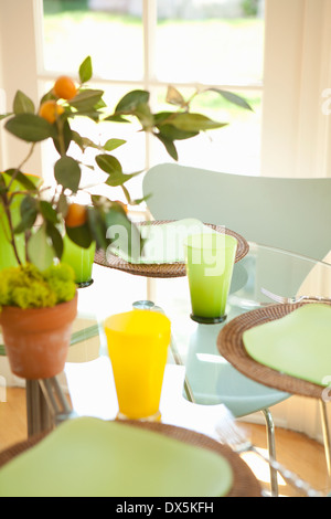 Potted plant on sunny table with place settings - Stock Photo