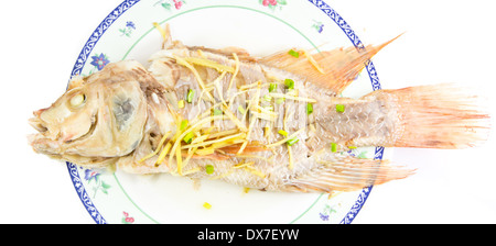 Steamed fish ginger on beatiful plate isolated on white background - Stock Photo