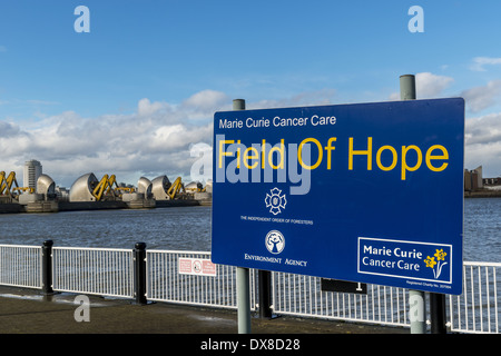 Marie Curie Cancer Care Field of Hope at the Thames Barrier. Shown here in the raised position, the Thames Barrier - Stock Photo