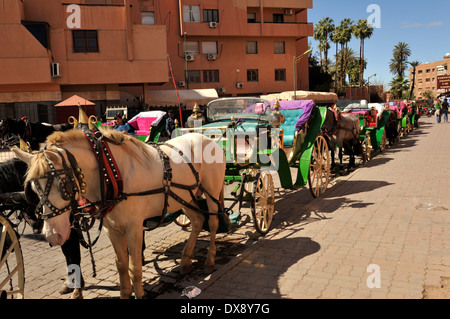 Line of horse-drawn carriages waiting for customers, Marrakech, Morocco - Stock Photo