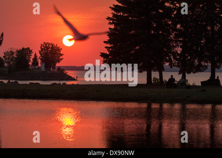 Summer Sunset at the Park with Gull. The sun sets over the Ottawa River and is reflected in the man-made pond. A - Stock Photo