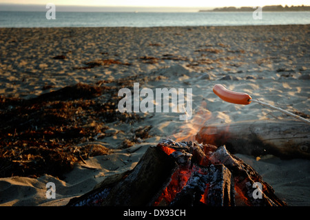 Hot dog roasting over campfire on the beach - Stock Photo