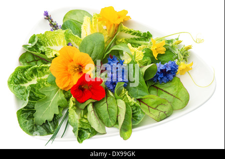 fresh green salad with edible garden flowers isolated on white background. healthy food - Stock Photo
