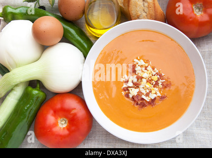 Salmorejo serving surrounded by some of the ingredients necessary to make this dish. - Stock Photo