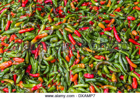 Looking down on red and green peppers in Paro, Bhutan - Stock Photo