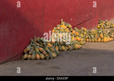 Pineapples stacked against red wall on street in Cape Coast, Ghana - Stock Photo