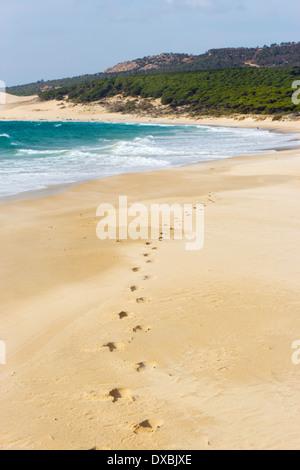 Bolonia Beach, Tarifa, Cadiz Province, Costa de la Luz, Andalusia, Spain - Stock Photo