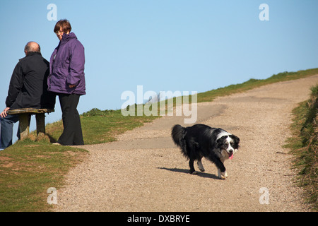 couple taking a rest on the way up to The Worcestershire Beacon with sheepdog in the Malvern Hills near Great Malvern - Stock Photo