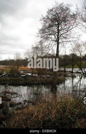 River Meon flooding in Titchfield - February 2014 - behind Titchfield Mill, Hampshire, England - Stock Photo