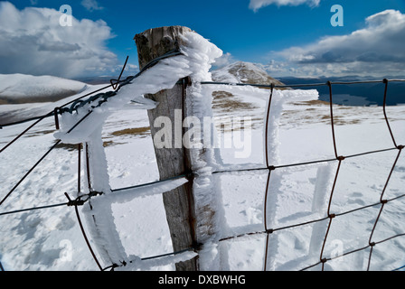 Fence covered in wind-blown ice on Skiddaw, Lake District fells - Stock Photo