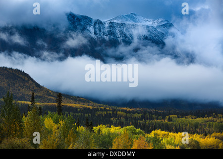 Autumn colours and Young Peak, British Columbia, Canada - Stock Photo