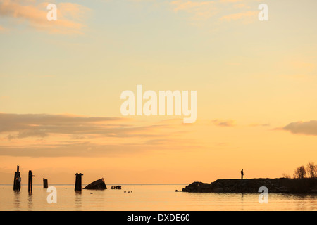 A man watches the sunrise at a view point at the 'Royston Wrecks' in Courtney, British Columbia. - Stock Photo