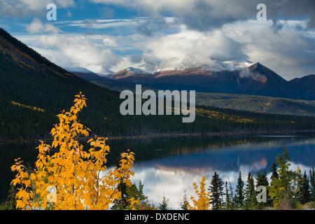 autumn colours at Nares Lake, with Montana Mountain beyond, near Carcross, Yukon Territories, Canada Stock Photo