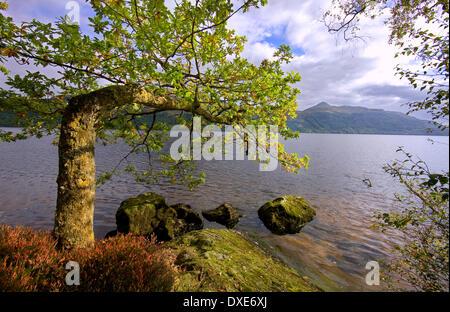 Summer view Loch Lomond,and ben lomond,fresh-water-loch, Dumbartonshire. - Stock Photo