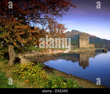 Autumn scene on shore of Loch Goil towards Carrick castle,lochgoilhead,argyll,scotland - Stock Photo