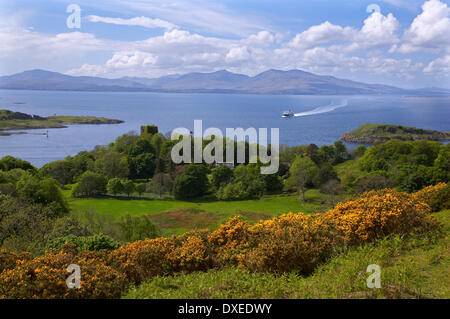 Spring view towards Dunollie castle, Mull and the approaching M.V.Clansman. Oban, Argyll - Stock Photo