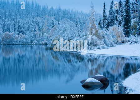 Early snow and autumn colours at Five Mile Lake, on the Silver Trail nr Mayo, Yukon Territories, Canada - Stock Photo